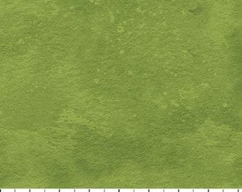 Northcott Fabric - Toscana 9020 731 Aloe Vera Green - Priced by the 1/2 yard