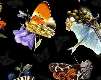 Butterfly & Moths - Elizabeth's Studio  9801 black - Priced by the Half Yard