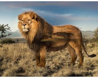 Lion Fabric - African Savannah - Wild Kingdom -  Hoffman Fabrics - Q4494H-259 - Digital Print Fabric  - Priced by the 28-Inch Panel