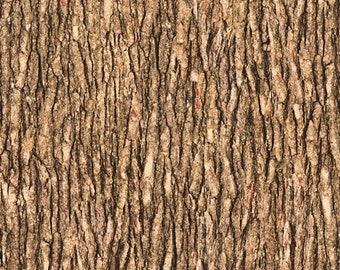 QT Fabrics Open Air Landscape Fabric - Tree Bark 28112 AC - Medium Brown - Priced by the half yard