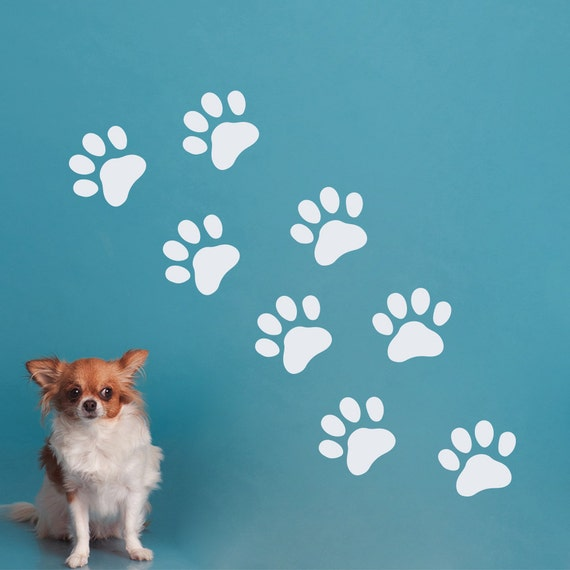 Wall Decals Dog Paws Decal Pet Shop Grooming Salon Decor Vinyl Etsy