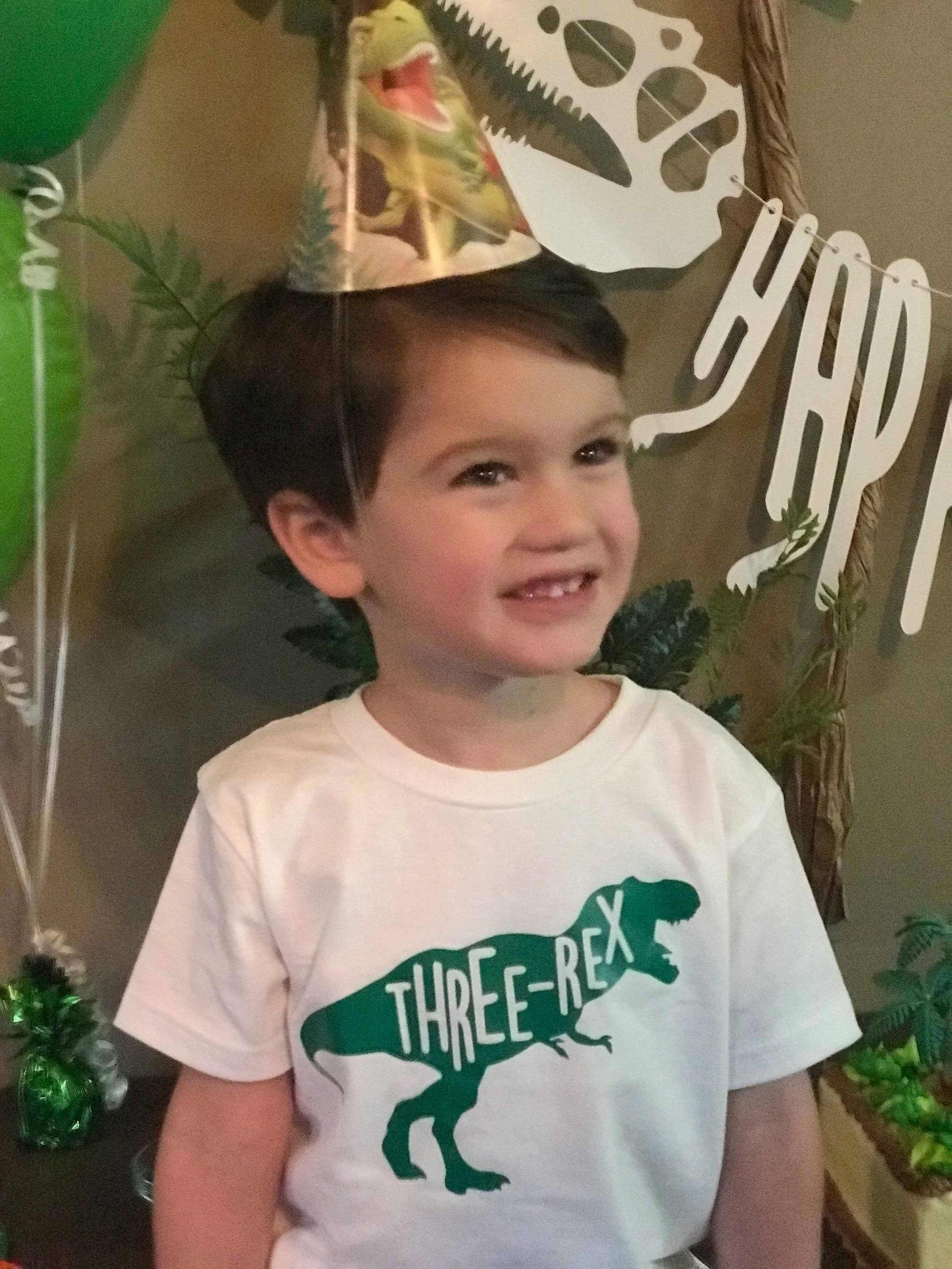 Three Rex Shirt Birthday Dinosaur Toddler Two Party Little Boy