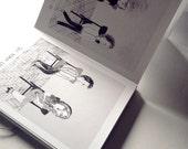 Quadrilha Concertina Book . Art Book