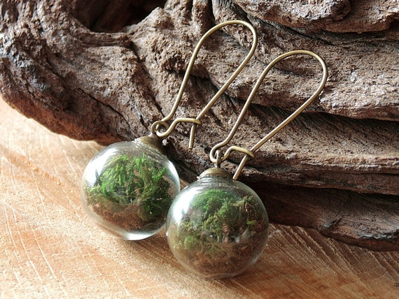Moos und Erde Ohrringe, Terrarium Schmuck, Naturschmuck, Blütenschmuck, Blüten Ohrringe, echtes Moos, botanische Ohrringe