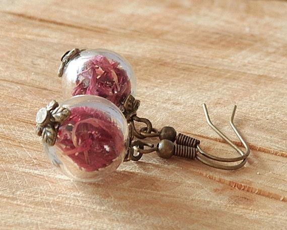 Echte Blüten Ohrringe, Kornblumen rot, Glaskugel, Bronze