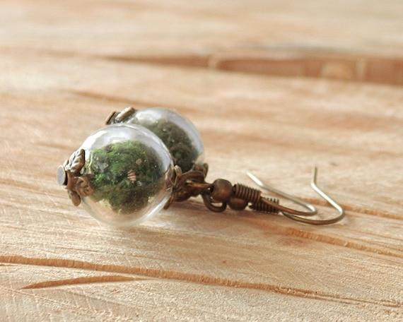 Echtes Moos Ohrringe, echte Blüten, Glaskugel Ohrringe, Bronze Ohrhänger, Blütenschmuck, Naturschmuck, Geschenk für Sie