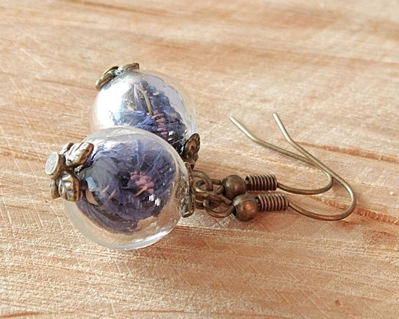 Echte Blüten Ohrringe, Kornblumen Ohrringe, Glaskugel, Bronze