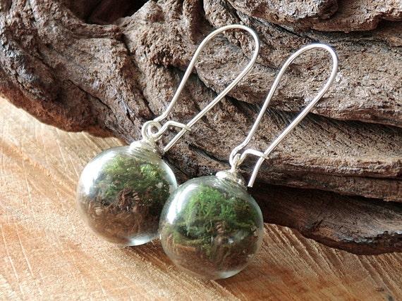 Moos und Erde Ohrringe, Terrarium Ohrringe, Blütenschmuck, Naturschmuck, echte Blüten Ohrringe, Terrarium Schmuck, Naturliebhaber