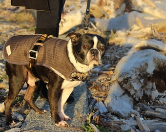 Shogun - Couture Dog Coat by JoeysCoat