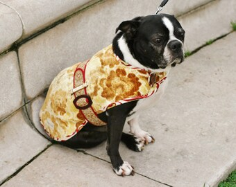 Caterpillar - Couture Dog Coat by JoeysCoat
