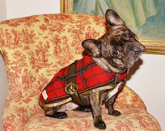 Celebrate Joey - Couture Dog Coat by JoeysCoat