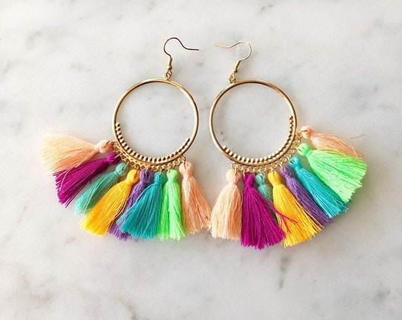 Rainbow Multicolored Tassel Fringe Hoop Earrings