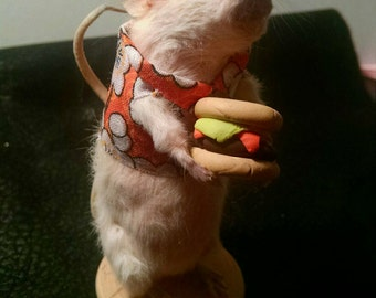 Burger time taxidermy mouse