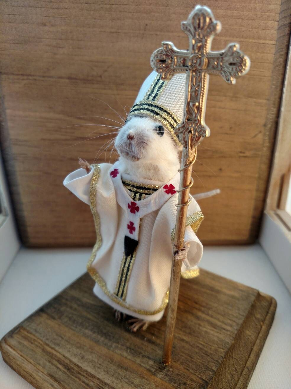 Image result for mouse pope