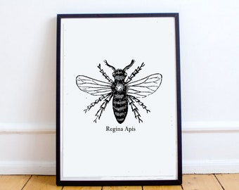 "Digital Wall Art, Feminist Print ""Queen Bee"" Popular wall art, black and white art, sale items, under 5 dollars, instant download, bee print"