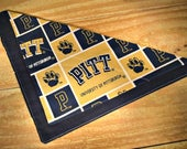 University of Pittsburgh ...