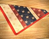 Americana Stars and Strip...