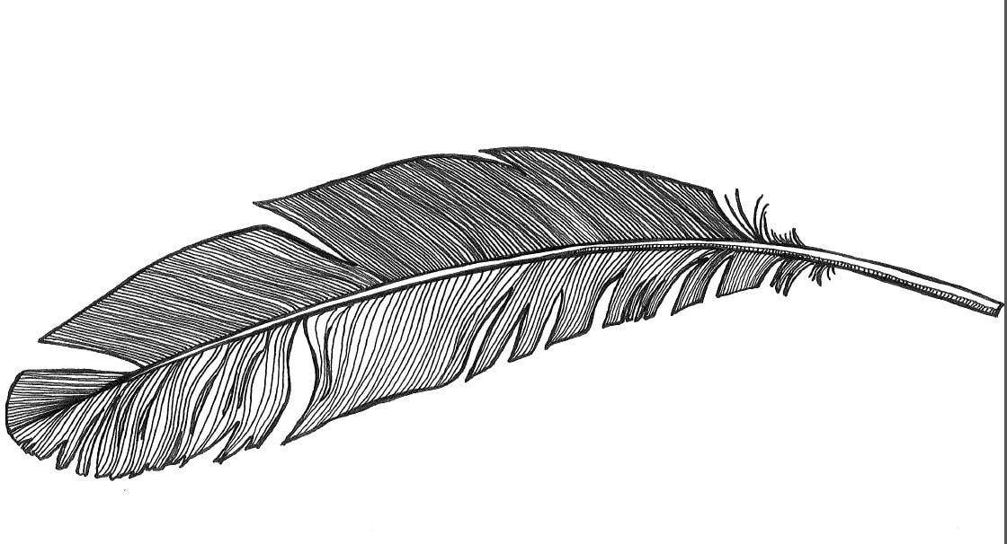 Feather Coloring Page Etsy