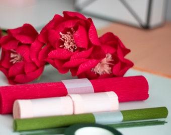 Paper Flower Kit, Craft Kit, Crepe Paper Flower DIY Tutorial, DIY Crafting Kit, Activity Kit, Gifts for Her, DIY Paper Flowers