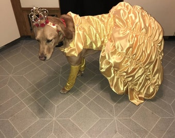 Beauty and the Beast/ Belle/Princess Dog Dress
