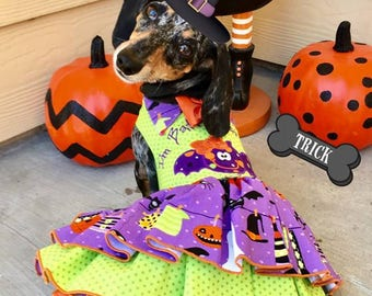Batty Over You Halloween Dog Dress