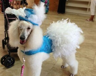 Fancy Feather Dress for Dogs - Large Breeds