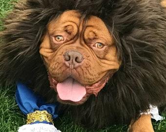 Beast Dog Costume/Beauty and the Beast
