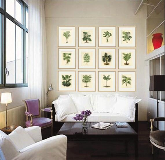 Palm tree art print antique Botanical Art Prints Home Decor | Etsy