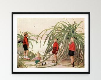 Spider plant print, Boys room decor, Botanical art poster