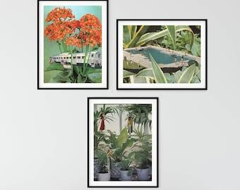 Botanical print set of 3 - Plant and flower print sets - Nature art