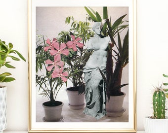 Plants print, Botanical Illustration, Plants Print Illustration, Indoor Plants, Botanical Print, Cactus Print, Terrarium Print