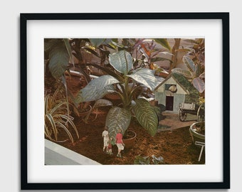 Wall art print, Botanical art prints, Indoor plant illustration, Fairy art