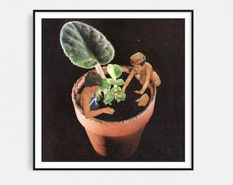 Botanical prints, Square print, plants print, house plant print, wall art