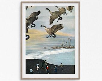 Animal prints, duck print, hunting decor, vintage poster, minimalistic art, animal art, sea prints