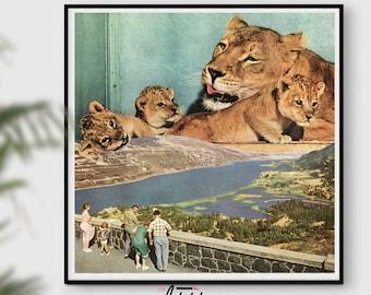Lion print, Lion Wall Art, Safari African Animal, Lion Photo, Retro prints Modern Wall Art, Nursery Decor, Printable Art