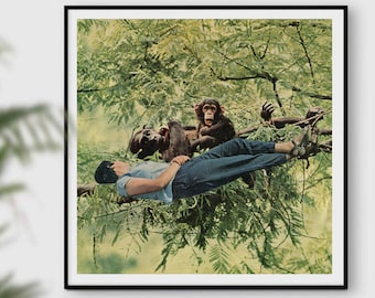 Monkey print, monkey gift, Human Evolution Wall Art, Evolution of Man, Monkeys, Green poster, Tree prints