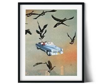 Retro print, Orange hue poster, Birds art illustration, Vintage car poster