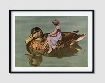 Duck print, British bird print, Animal prints, Gift for her, Animal lover, A4
