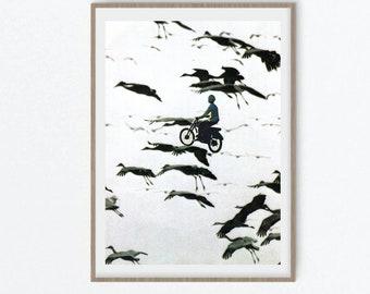 Minimalist print, Black and white wall art, Bird print, Flying birds wall art