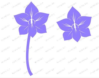 SINGLE Orchid  svg digital download