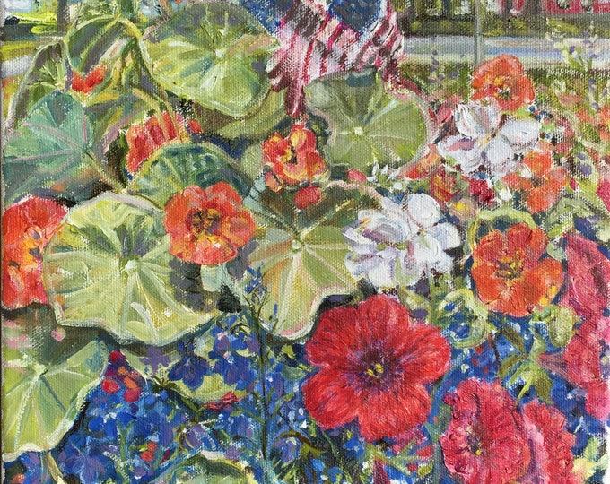 Nasturtiums, petunias and lobelia