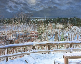 Harbor Springs Snowy Overlook