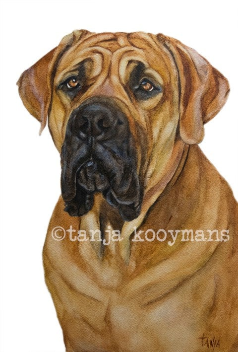 portrait dog chocolate dog lab Labrador Dog Art print brown dog golden retriever petportrait size 8x12 inch hunting dog