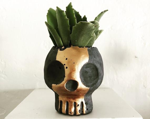 PeaboSkull Skull Planter 2018 V2.0 - Hypertufa
