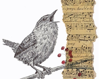 Singing Christmas Wren