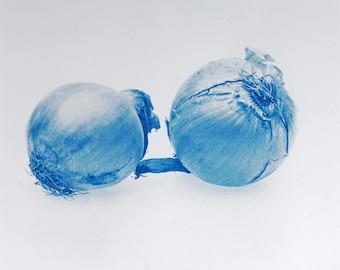 Blauwdruk oftewel cyanotype ui.