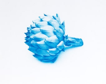 Blauwdruk oftewel cyanotype artisjok.