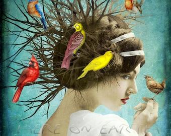 Songbirds Print 8x10