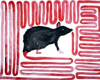A Rat Smelling - Acrylic Painting - Mel Sheppard Original / Signed - A2 Size on Paper