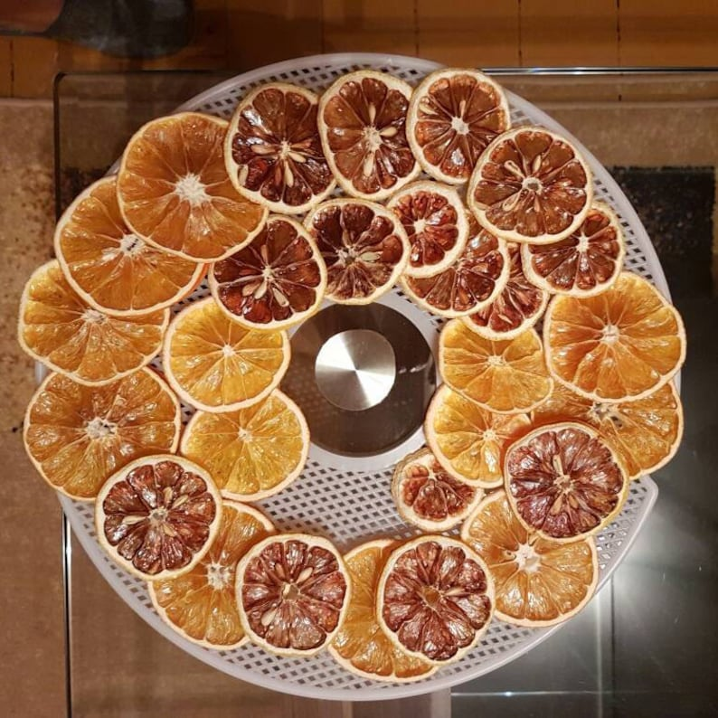 Orange Lemon Dried Slices Decorative Etsy